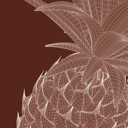 Fruits_Ananas_DETAIL.jpg